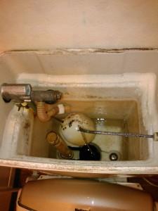 神戸市トイレ水たまらない